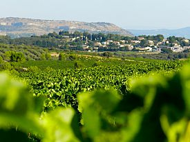 ESCAPADE DANS LES VIGNOBLES - Appart-hôtel à Montpellier + demi-journée de visites